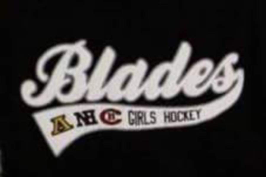 Girls' ice hockey players from Amity, North Haven, and Cheshire compete for the Connecticut Blades.